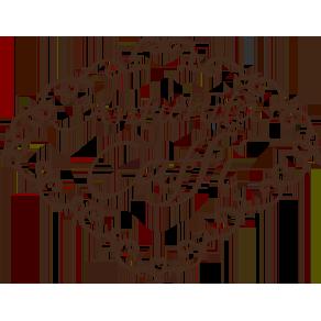 logo-antichitacaffi